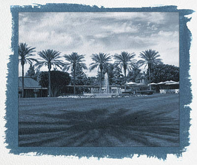Photograph - Painted Cyanotype Palm Trees And Shadows by Aimee L Maher Photography and Art Visit ALMGallerydotcom
