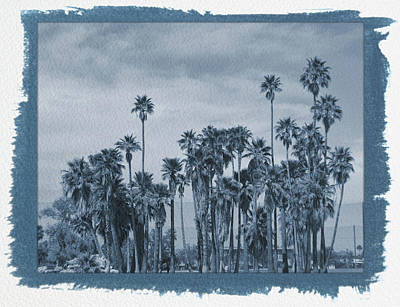 Photograph - Painted Cyanotype Palm Trees At Encanto Park by Aimee L Maher Photography and Art Visit ALMGallerydotcom
