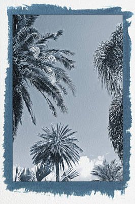Photograph - Painted Cyanotype Palms In The Sky by Aimee L Maher Photography and Art Visit ALMGallerydotcom