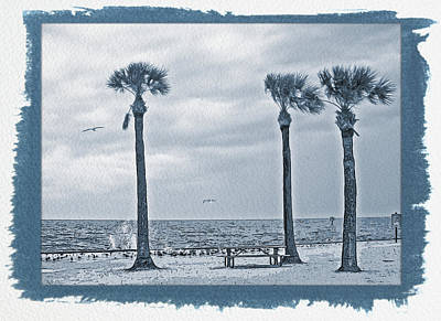 Photograph - Painted Cyanotype Pine Island by Aimee L Maher Photography and Art Visit ALMGallerydotcom