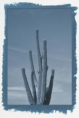 Photograph - Painted Cyanotype Saguaro Cactus by Aimee L Maher Photography and Art Visit ALMGallerydotcom