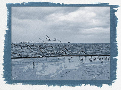 Photograph - Painted Cyanotype Sands Of Time by Aimee L Maher Photography and Art Visit ALMGallerydotcom