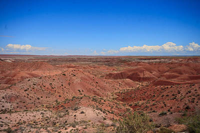 Photograph - Painted Desert #6 by Robert J Caputo