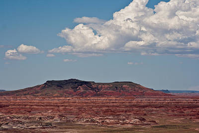 Photograph - Painted Desert #8 by Robert J Caputo