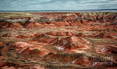 Photograph - Painted Desert Arizona by Susan Warren
