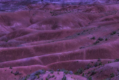Painted Desert Azorina Art Print