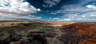 Art Print featuring the photograph Painted Desert by Charles Ables