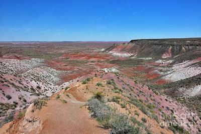 Photograph - Painted Desert by Debbie Green