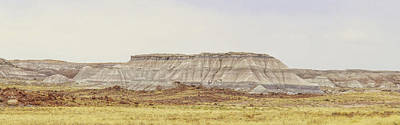 Photograph - Painted Desert by Elaine Malott
