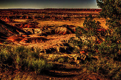 Photograph - Painted Desert From Kachina Point N0. 3 by Roger Passman
