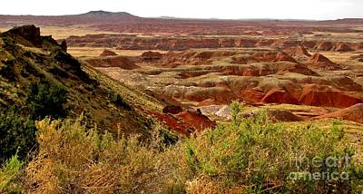 Marilyn Photograph - Painted Desert Panorama by Marilyn Smith