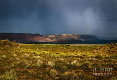 Photograph - Painted Desert Storm by Fred Lassmann