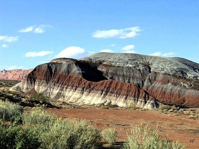Photograph - Painted Desert by Will Borden