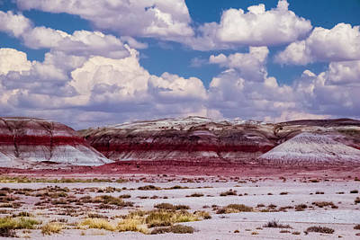 Photograph - Painted Desert by Will Burlingham