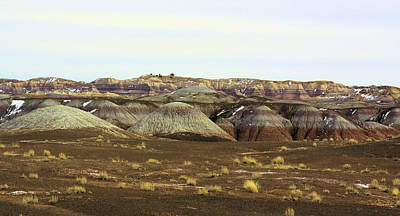 Painted Desert Winter 0576 Art Print by Sharon Broucek