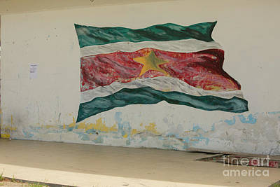 Photograph - Painted Flag Of Suriname by Patricia Hofmeester