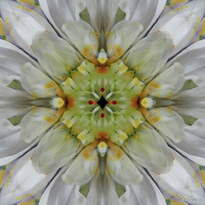 Digital Art - Painted Flowers #6253_4 by Barbara Tristan