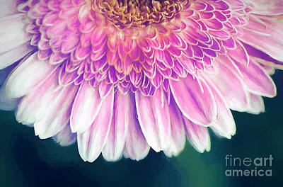 Digital Art - Painted Gerber Daisy by Darren Fisher