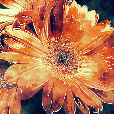 Photograph - Painted Gerbera Daisies 4 - Orange Marmalade by HH Photography of Florida