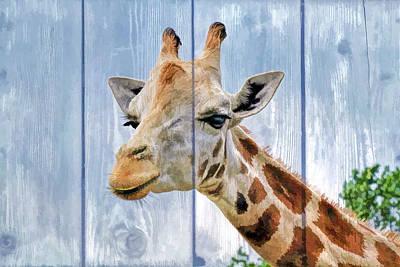 Fuzzy Digital Art - Painted Giraffe For Kids Room by Geraldine Scull