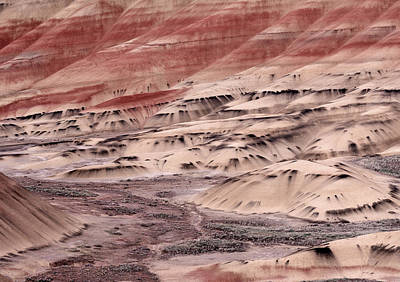 Painterly Photograph - Painted Hills 2b by Leland D Howard
