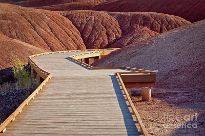 Painted Hills Boardwalk Art Print by Jerry Fornarotto