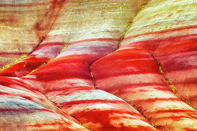Photograph - Painted Hills By Nature by Dee Browning