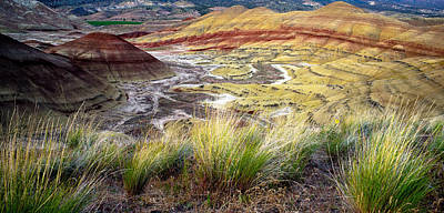 Painted Hills From Overlook Trail Art Print by Adele Buttolph