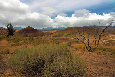 Painted Hills Landscape In Central Oregon Art Print