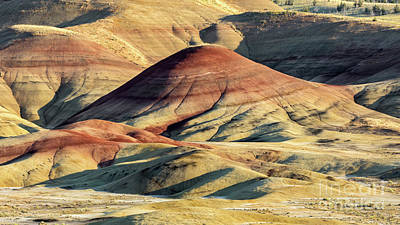 Painted Hills, Oregon Art Print by Jerry Fornarotto