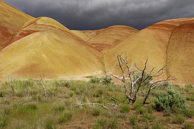 Painted Hills Storm Clouds Art Print by Jean Noren