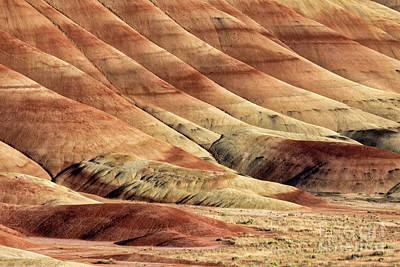 Painted Hills Textures Art Print by Jerry Fornarotto