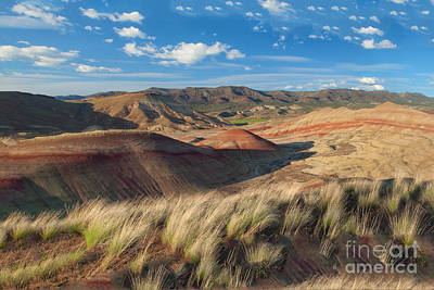 Photograph - Painted Hills by Moore Northwest Images