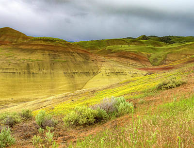Photograph - Painted Hills Weather by Jean Noren