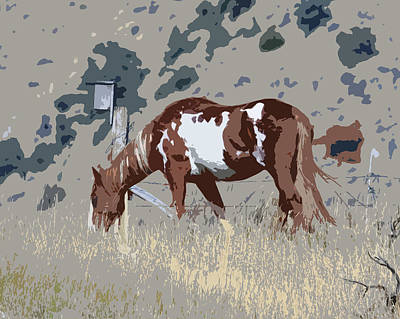 Art Print featuring the photograph Painted Horse by Steve McKinzie