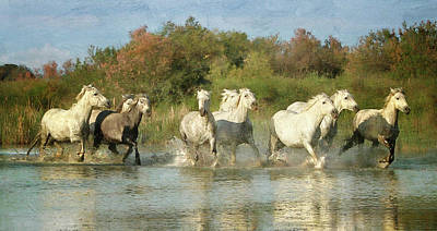 Photograph - Painted Horses by Karen Lynch