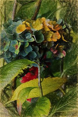 Floral Digital Art Digital Art Painting - Painted Hydrangeas  by Bonnie Bruno