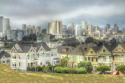 Photograph - Painted Ladies Beyond The Fence by SC Heffner