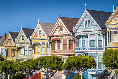 Photograph - Painted Ladies by JR Photography