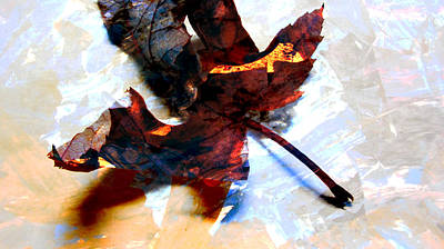 Photograph - Painted Leaf Series 2 by Anita Burgermeister