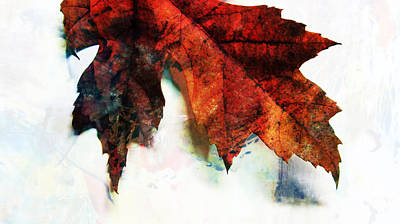 Photograph - Painted Leaf Series 3 by Anita Burgermeister