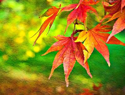 Red Leaf Digital Art - Painted Leaves by Cathie Tyler