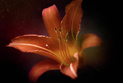 Wine Glass - Painted Lily by Scott Norris