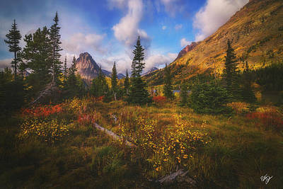 Painted Morning Art Print by Peter Coskun
