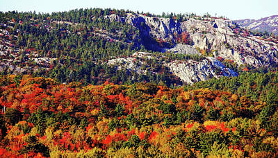 Photograph - Painted Mountains by Debbie Oppermann