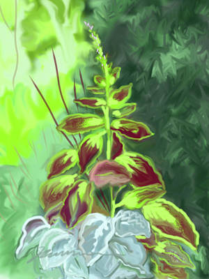 Painting - Painted Nettle by Jean Pacheco Ravinski