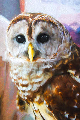 Photograph - Painted Owl by Carlos Diaz