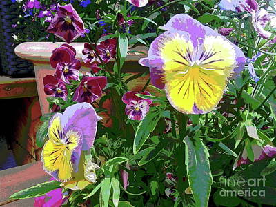 Photograph - Painted Pansies by Linda Bianic