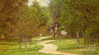 Photograph - Painted Pathway by Bobbee Rickard
