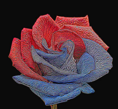 Photograph - Painted Patriotic Rose by Judy Vincent